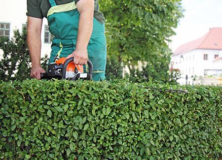 Pose de clôture et autres aménagements paysagers par Clôt'n Co à Harnes